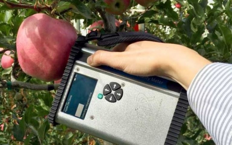 Applications of Spectroscopy in Agriculture